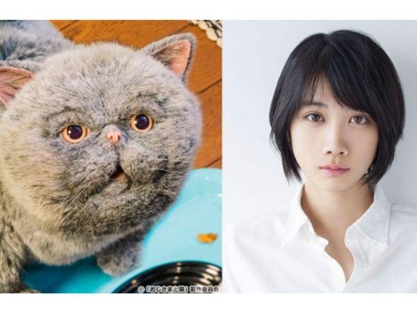 松本穂香とメス猫マリン